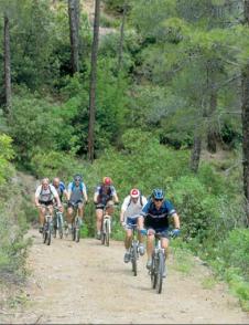 Cycling 3_image